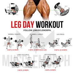 Try out this best legs workout for better shaped legs Source by yourgymguides The post Leg workout appeared first on Roisin Health Fitness. Beginner Leg Workout, Leg Workouts For Men, Best Leg Workout, Gym Workout Chart, Gym Workout Tips, At Home Workouts, Home Leg Workout Men, Back Day Workout, Fitness Studio Training