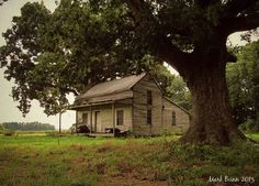 Old...NC Homesteads, Cabin, House Styles, Home Decor, Homemade Home Decor, Cabins, Farmer, Cottage, Decoration Home