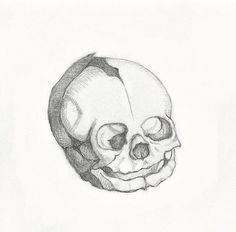 "Laura Stanziola, ""Young Child's Skull,"" drawing for the new journal, ""Paradise Lost,"" 2016."
