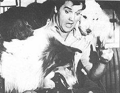 Tutti's World: Elvis Presley