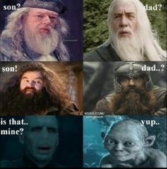 Harry potter and lord or the rings meme