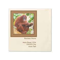 Avoid any messy dinners with Animal napkins from Zazzle. Browse through our marketplace of paper and cloth napkins ranging in different styles and sizes. Cocktail Napkins, Business Names, Promotion, Cocktails, Articles, Orange, Painting, Craft Cocktails, Painting Art