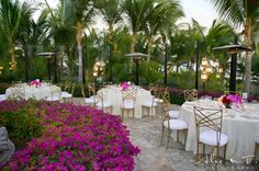 Wedding at One and Only Palmilla  https://www.oneandonlyresorts.com/one-and-only-palmilla-los-cabos/weddings-and-events
