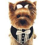 Tuxedo Dog Scarf