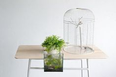 """http://www.studioaflo.com/wp-content/uploads/2014/11/6ab98__maxime-mellot-turia-table-for-meditation-designboom-04.jpg - The Gang's All Here: Your Tiny Animal Friends Can Live at This Precious Dutch Table - http://www.studioaflo.com/decorating-ideas/the-gangs-all-here-your-tiny-animal-friends-can-live-at-this-precious-dutch-table/ - #Animal, #Dutch, #Friends, #Gangs, #Here, #Live, #Precious, #Table, #This, #Tiny            google_ad_client = """"ca-pub-2902912484907721"""";     g"""