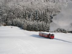 ORT: Schafbergbahn REGION: Salzkammergut BUNDESLAND: Oberösterreich LAND: Österreich ©WTG