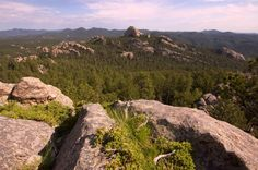 Ahhh the Black Hills, who else wants to be in this spot right now!