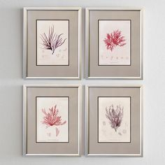 Silver corals http://www.roommy.ru/catalog/frames/silvercorals/