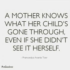 A Mother Knows What Her Child's Gone Through, Even If She Didn't See It Herself. –  Pramoedya Ananta Toer