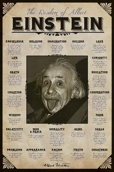 Albert Einstein Tongue Mini Poster 40cm x 50cm new and sealed