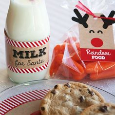 Santa's Milk and Cookies Kit - Christmas Eve Crafts for Kids | BigDotOfHappiness.com