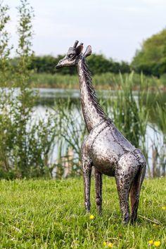 2ft giraffe metal sculpture from Pangea