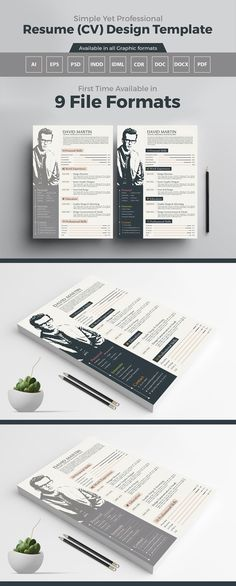 Modern Resume (CV) Design Template in PSD, Ai, EPS, INDD, CDR, DOC - simple professional resume template
