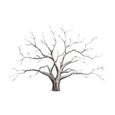 SODIAL(R) Fashion Creative DIY Fingerprint Tree Personal Custom Signature Guestbook For Birthday Party Wedding Home Decoration Without Frame Painting