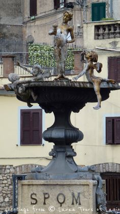 This is an odd one and the S.P.Q.M. means Senatus Populusque Montelanico. The fountain is located in Montelanico in the province of Rome and this is the 'Fountain of the Cherubs'. Italy