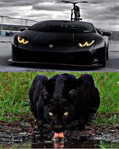 Black Beasts!🐾 - Via @gangster_auto - 👉 @fitnees.idol #lamborghini #panther #allblack #deeply