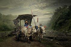 Fotograf crossing the valley von budi 'ccline' auf 500px