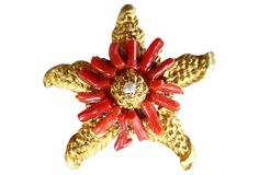 Coral Twig Starfish Brooch on OneKingsLane.com from Maxwell's 9.13.34.  Sold!