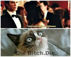 Lol up until the end of season one I thought Elena was my favorite character but it's totally Damon.