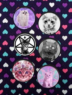 Devil Kitty Plugs- 5mm-50mm (Sold as a Pair) by GeekyWears on Etsy https://www.etsy.com/ca/listing/224916911/devil-kitty-plugs-5mm-50mm-sold-as-a