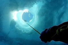 Ice diving in Antarctica