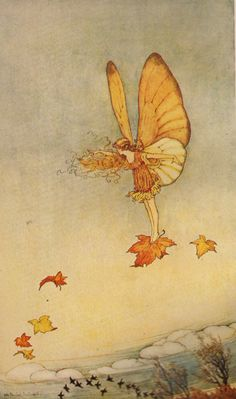 Illustration by Ida Rentoul Outhwaite... I'd love to have this large for Autumn... or just small for the nature table!