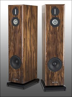 Michigan's Salk Sound Song3 offers 40 kHz at $2850. Basically, you get a supertweeter for free. This is an exceptional value and sounded open with a 60 Watt, solid state amp. Mr. Salk is easy to speak with.