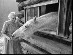 When I Am An Old Horsewoman I shall wear turquoise and diamonds, And a straw hat that doesn't suit me And I shall spend my social security on white wine and carrots, And sit in my alleyway of my barn And listen to my horses breathe.