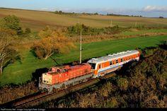RailPictures.Net Photo: M40 235 MAV M40 at Váckisújfalu, Hungary by Peter Szilagyi