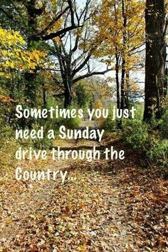 ~Sunday Drive On A Country Road~