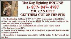 ALWAYS REPORT DOG FIGHTING ACTIVITY