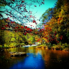 Check out this item in my Etsy shop https://www.etsy.com/listing/253206866/colorful-autumn-photography-art