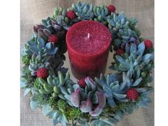 Live Succulent Christmas Wreath Centerpiece | Green Bride Guide