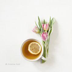 tea_flowers_6652_web