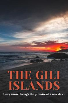 The Gili Islands are a group of 3 tiny islands – Gili Trawangan, Gili Meno and Gili Air – in Indonesia, near the coast of northwest Lombok Island. Characterized by sandy beaches fringed with palm trees, they're known for their coral reefs just offshore. . #lombok #indonesia #travel #traveling #giliislands #island #nature #bucketlist #travelinspirations #travelphotography #sunset Bucket List Destinations, Travel Destinations, Travel Around The World, Around The Worlds, Gili Air, Roads And Streets, Gili Trawangan, Gili Island, Coral Reefs