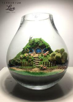 Hobbit House Terrarium #terrarios