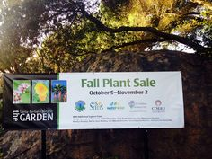 2013 SBBG Fall Plant Sale: October 5 to November 3, 2013 - California native plants for your garden!