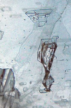 Selenite inclusions (by Sea Moon)