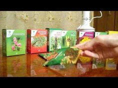 Тимьян Тимьян чрезвычайно эффективен для стимуляции тимусной железы, а её антибактериальные свойства предотвращают рост паразитов при пробуждении естественной защитной системы организма. Тимьян также убивает кишечные микроорганизмы. Рекомендуется пить чай с тимьяном. Чеснок Чеснок обладает сильными противогрибковыми свойствами, которые идеально подходят для устраненияпаразитов. Он убивает вредные микроорганизмы и стимулирует удаление тяжелых металлов из организма. Этот мощный …