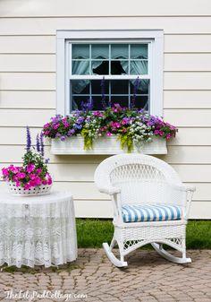 5-gorgeous-window-box-tips