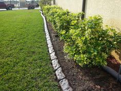 95 Best Fort Myers Curbing Images In 2019 Landscape