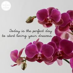 Today is the perfect day for you to start living  your dreams!