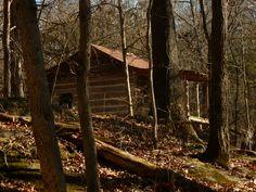 Ozark cabin in the backwoods of Arkansas