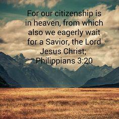 Phil. 3:20