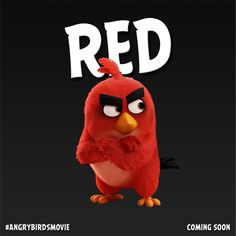 Angry-Birds-Character-Card-Red1-600x600.png (600×600)