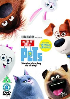 The Secret Life Of Pets (DVD + Digital Download) [2015] £7.50 to buy with free UK delivery.  Amazon Bestsellers Rank: 29 in DVD & Blu-ray (See Top 100 in DVD & Blu-ray)      #3 in DVD & Blu-ray > Animation     #11 in DVD & Blu-ray > Children & Family