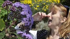 Spring is hard for hayfever suffers. But, there's lots you can do to combat it. Here are ten tips to fight hayfever.