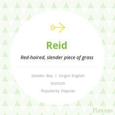 reid name. baby name: reid name t