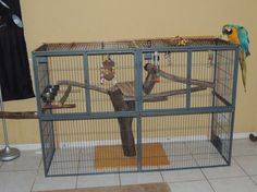 Interesting home-made parrot cage
