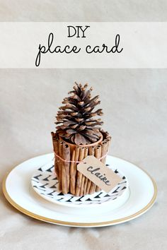 entertain // diy place card — Claire Brody repurpose twig votives and giant pinecones like this